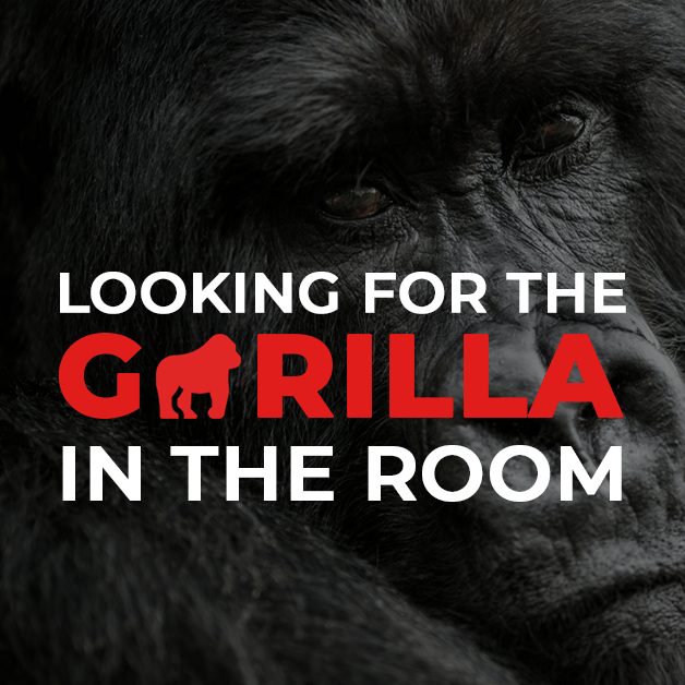Looking for the Gorilla in the Room